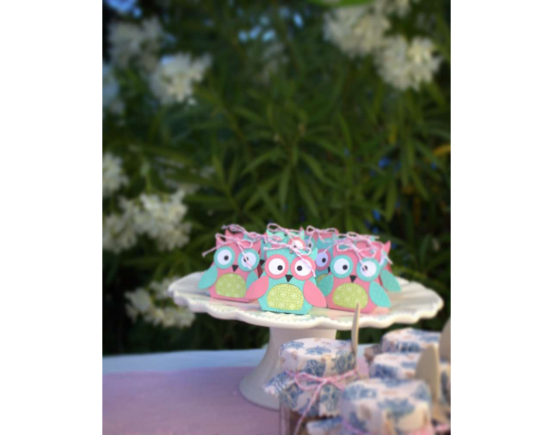 Woodland Owl Party