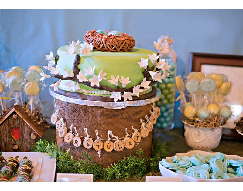 Bless Their Nest baby Shower Theme