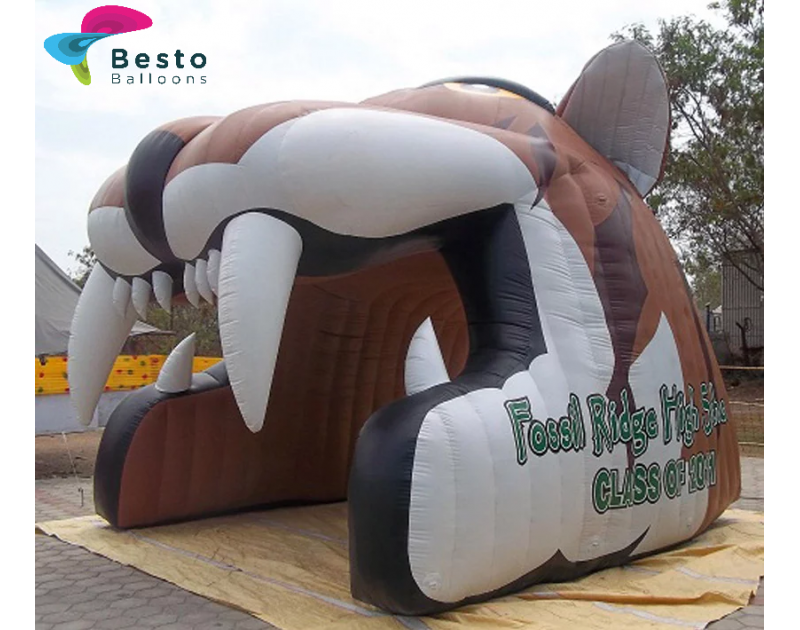 Customized Inflatable Tunnel