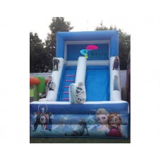Frozen Inflatable Slides and Bouncing Combo Rental Service