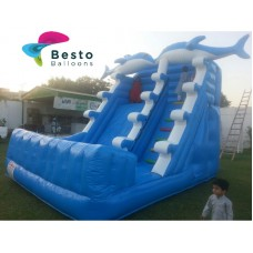 Dolphin Inflatable Slides and Bouncing Combo Rental Service