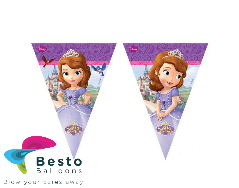 Sofia Princess Buntings